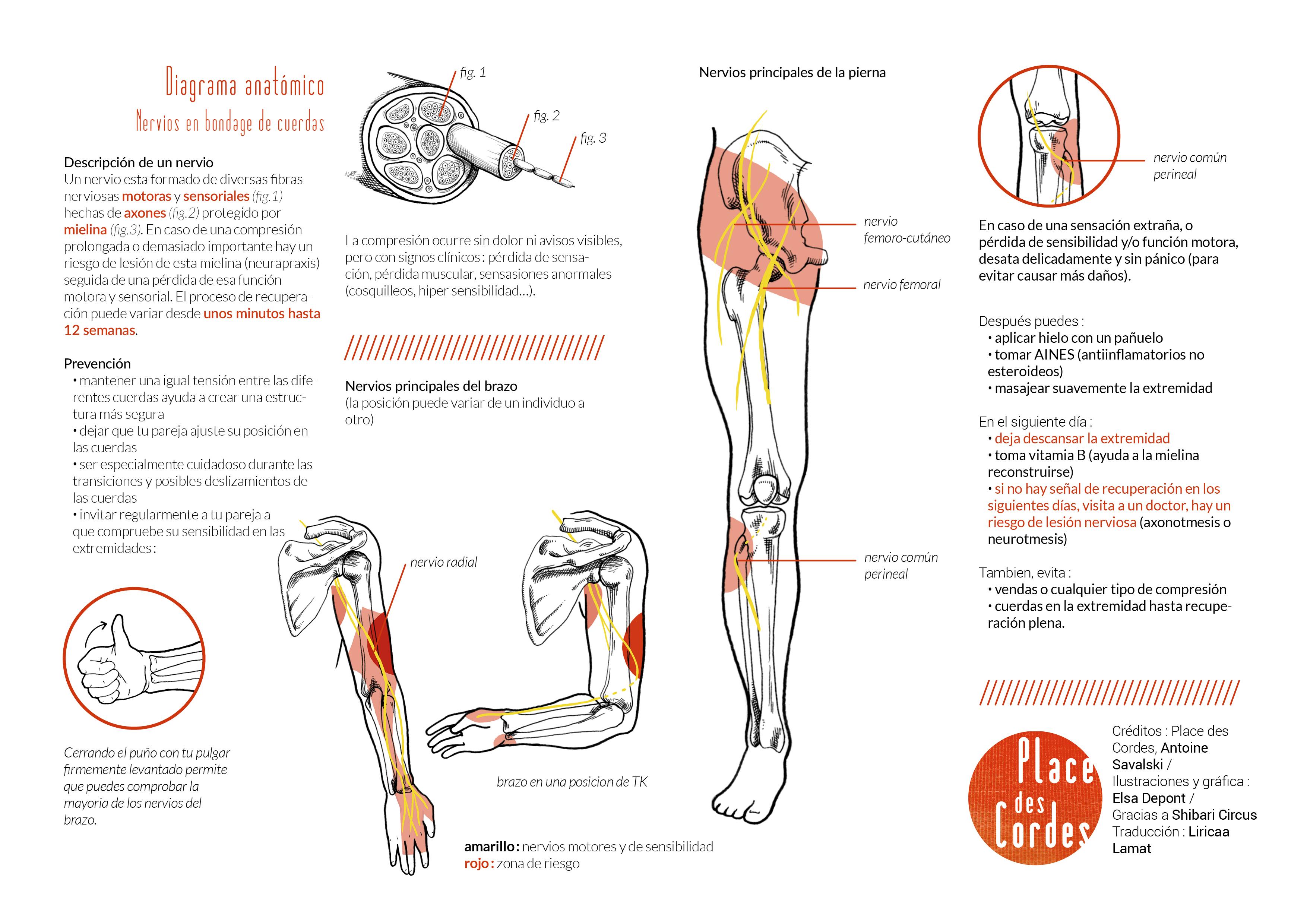 Nerve damage prevention